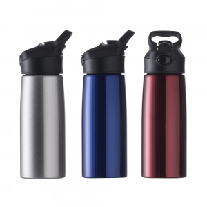 Squeeze Inox 700ml